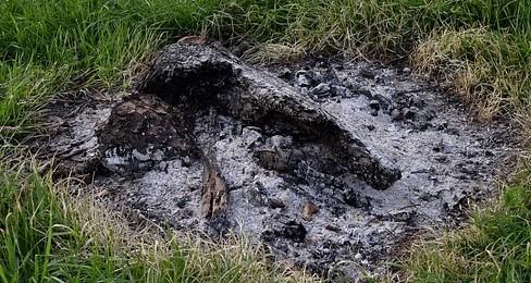 campfire-3344827_640 (2)